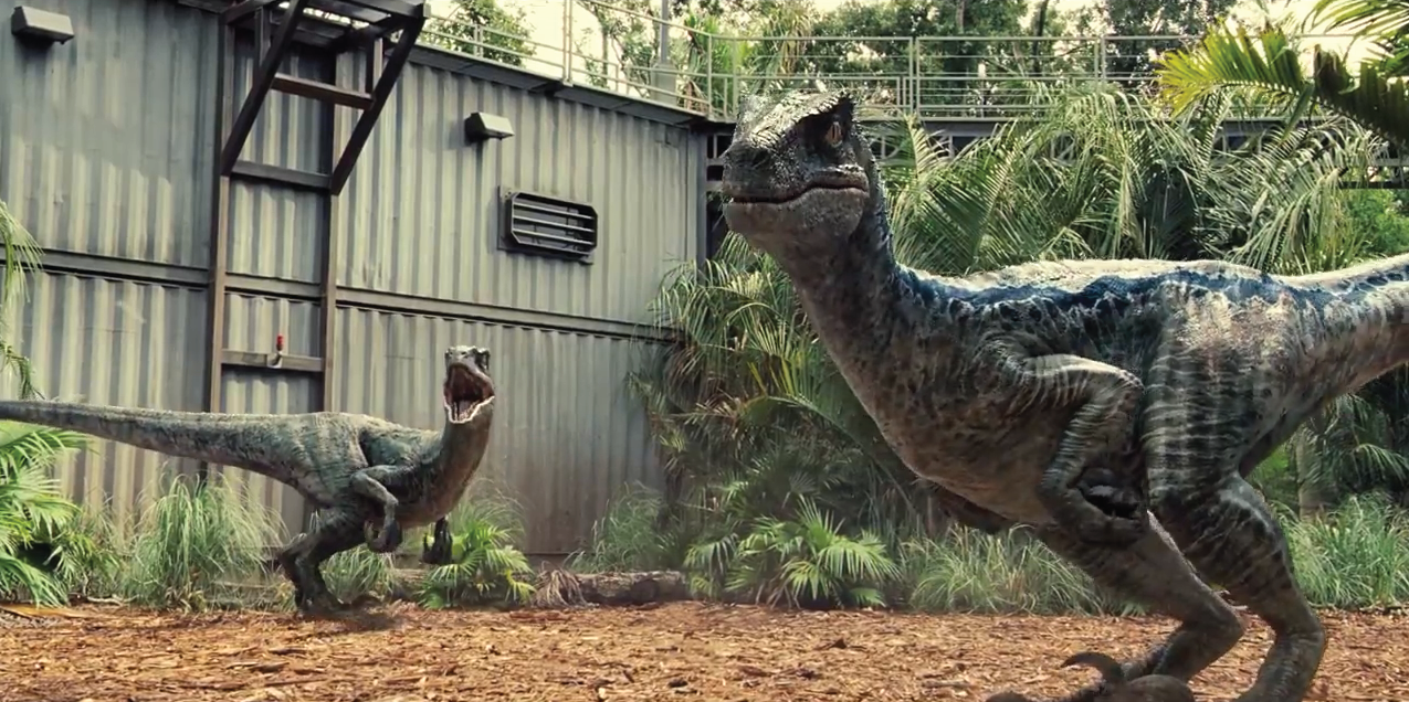 Image result for velociraptor jurassic world