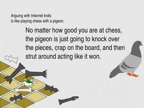 File:Pigeon chess.jpg