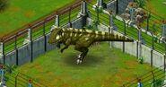 Carchadontosaurus 1Star
