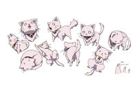 Neko (cat form) Concept