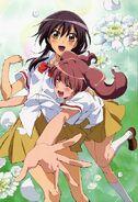 Sakura and misaki