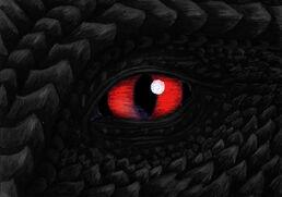 Echorun dragon-eye coor correction