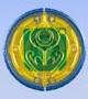 Kiva Medal
