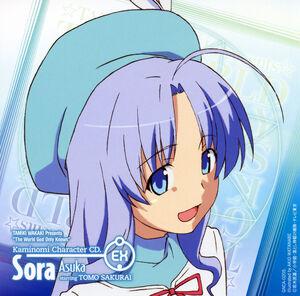 Sora Card