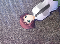 Rin on the roof.png