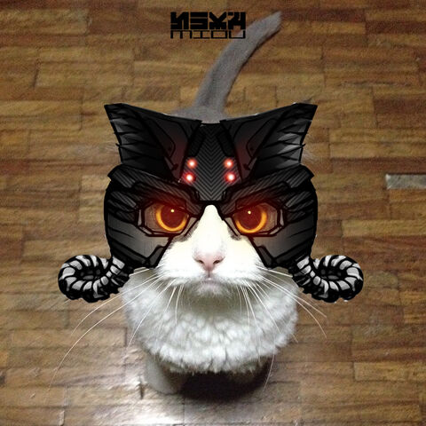 File:Helghast cat by easycheuvreuille-d7jimgp.jpg