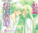Kimi ni Todoke Light Novel Volume 06