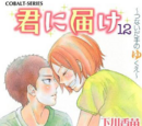 Kimi ni Todoke Light Novel Volume 12