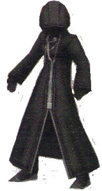 File:CloakedRiku.png