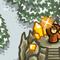 Sorcerer Mage Thumbnail