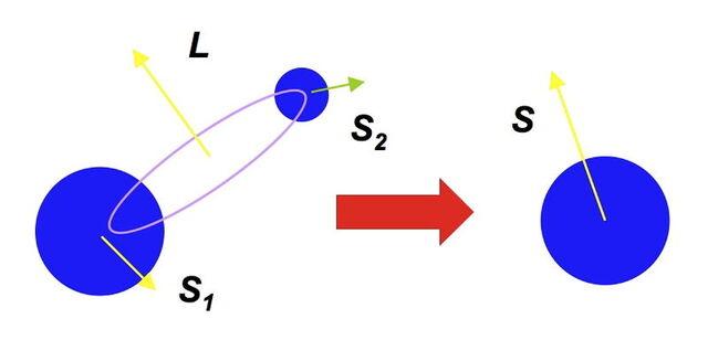 파일:SpinFlip.jpg