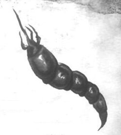 Nikumizu 2