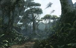 Verdant Jungle