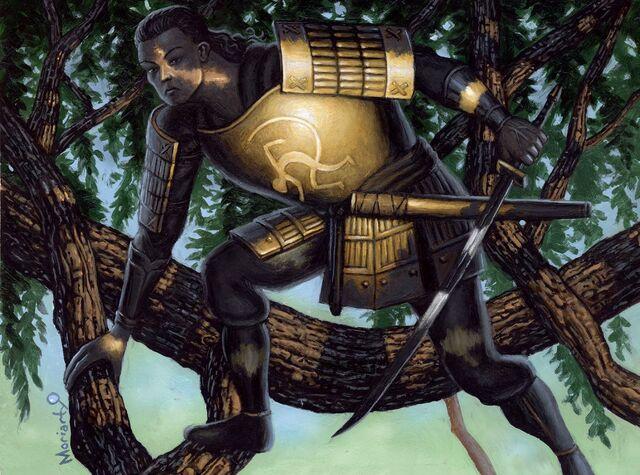 File:Armor of Light.jpg