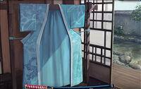 Kimono of the Turquoise Champion