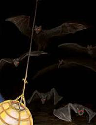 File:Bats.jpg
