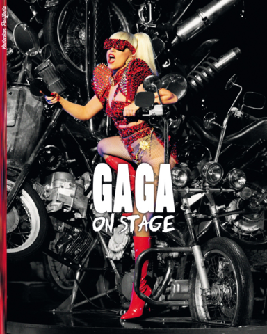 File:Sunset Entertainment - Portfolio - Gaga on Stage.PNG
