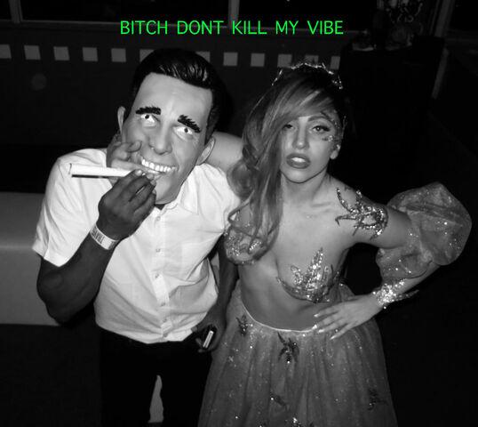 File:Bitch, Don't Kill My Vibe.jpg
