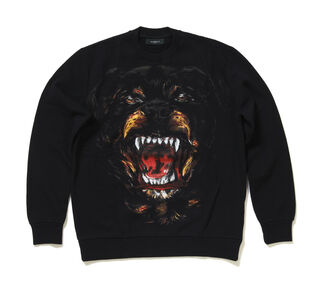 File:Givenchy 2011 - Menswear Collection - Rottweiler sweater.jpg