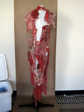 File:Meat Dress (Back).jpg
