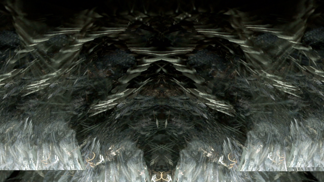 File:SHOWstudio-Raven-05.png