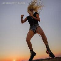 Perfect Illusion Cover