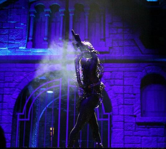 File:The Born This Way Ball Tour Government Hooker 008.jpg