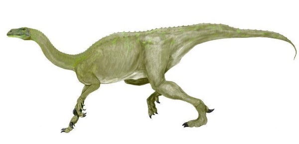 File:Plateosaurus.jpg