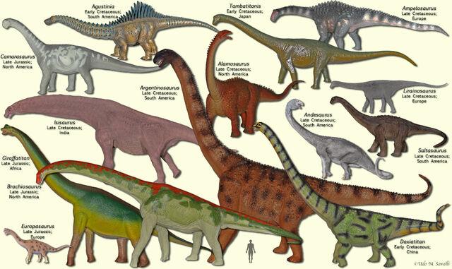 File:SauropodModels3.jpg