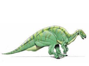Camptosaurus-1