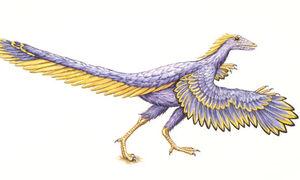 Archaeopteryx-artists-imp-001