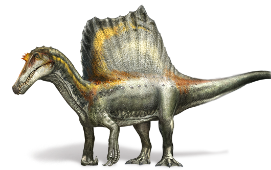 File:Spinosaurus Four Legs.png