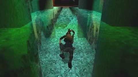 Tomb Raider 3 The Lost Artifact - Reunion