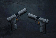 LC Reflections Dual Pistols