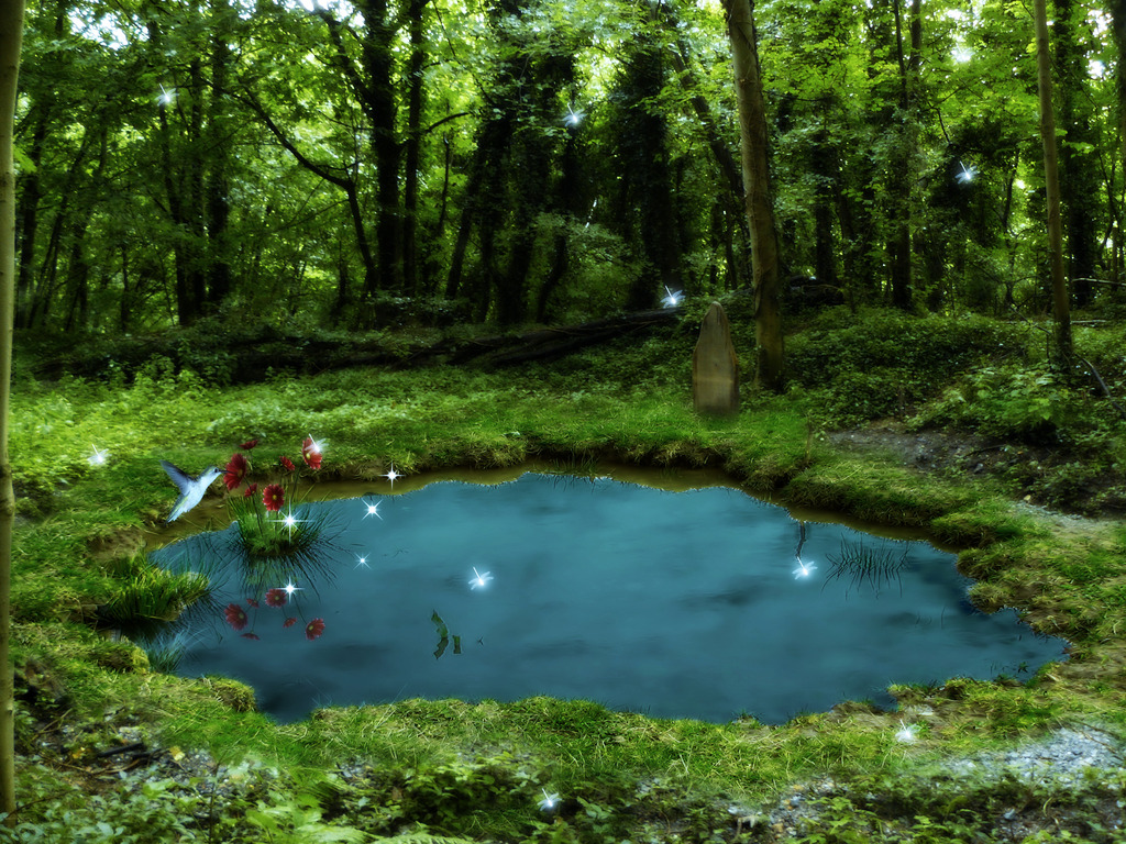 Image pond of the world of lawl rpg wiki for Beautiful small ponds