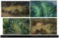 Summoner's Rift Update Theme Quadrants.png