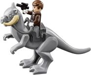 Han Solo riding
