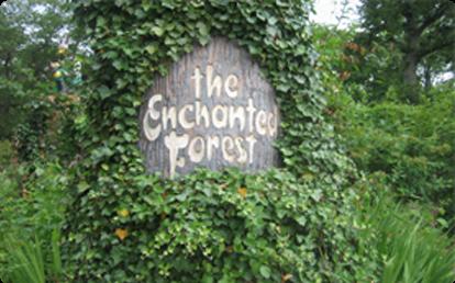 File:Enchantedforest.png