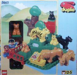 2665-Wild Cats