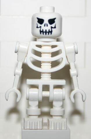 File:Skelett.jpg