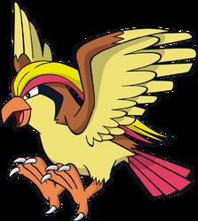 018 Pidgeot DW