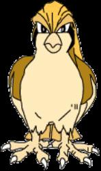 018 Pidgeot OS2 Shiny