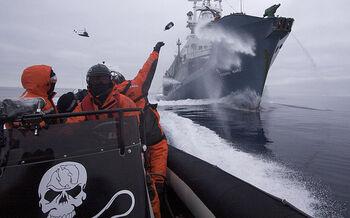 2009-02-02 Sea Shepherd crew member hurls a bottle of rotten butter