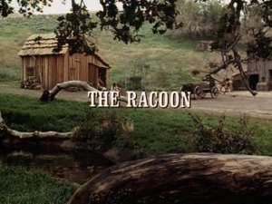 Title.raccoon