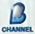 B-Channel 2010 on-air logo
