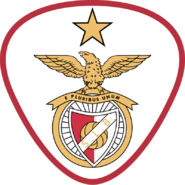 SLBenfica10-11