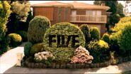 FiveNeightbours2009