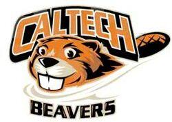 Beaver logo NEW