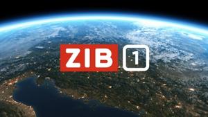 ZIB 1