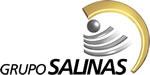 Gruposalinas logo